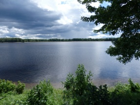 View out over the St John river