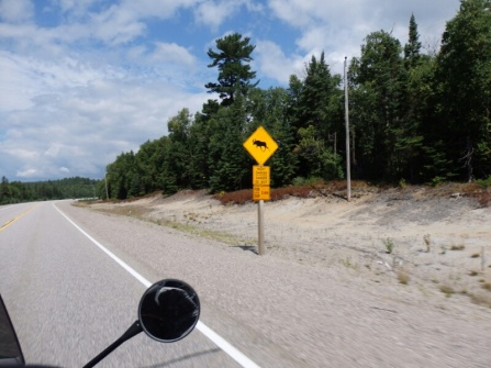 A common road sign - moose mainly come out at night