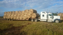 The Kenworth truck that we hauled bales with
