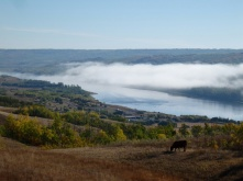 Fog in the morning over Peace River