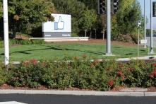 Facebook HQ Silicon Valley