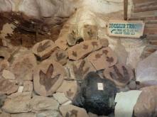 Dinosaur Tracks in the Mokie cave in Utah