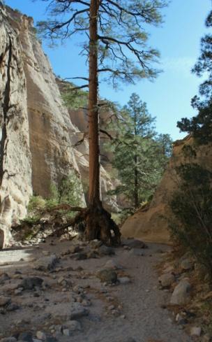 Tent rock New Mexico