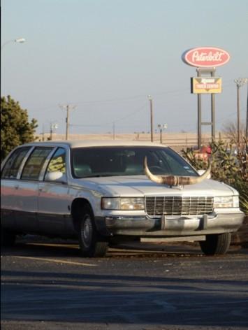Texan limo