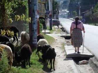 Impressions of Guatemala