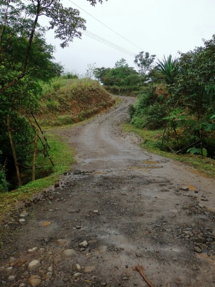 Road to the Tenorio Volcano National Park.