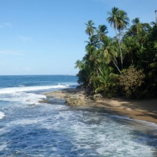 Manzanillo Beach Puerto Viejo
