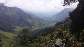 Cocora National Park