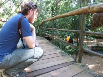 Bird sanctuary beside Iguazu Falls